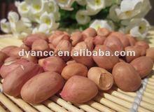 Peanut oil pressing machine factory/Oil pressing machine production line