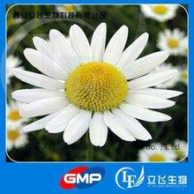 Chamomile Flowers Extract, Matricaria recutita extract 98% Apigenin