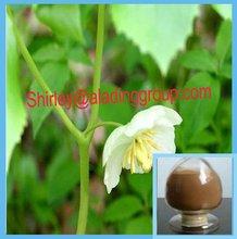 D. Versipoellis ( hance ) m. Cheng 98% podophyllum resina, podophylline