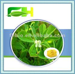 Fenugreek saponins 50%/Fenugreek Seed Extract