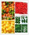 Nombre de corte de vegetales( la exportación de vegetales) con la fda, brc, halhal, kosher, haccp