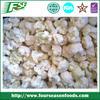 Grade A / B iqf cauliflower florets, White broccoli for export
