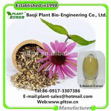 Factory spot supply chicory acid Echinacea polyphenols Echinacea Extract
