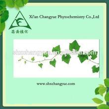 pure natural herbal medicine 10% hederageine Ivy herb extraction powder