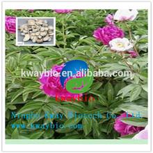 Manufacturer Supplying Herb Medicine White Peony Root Extract Powder / Paeonia lactiflora Pall.