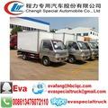 Fonton mini-freezer caminhão de peixe fresco do caminhão de transporte