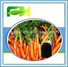Purple Carrot Concentrate Juice