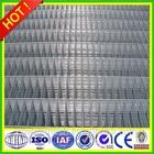 welded wire mesh fence panels in 6 gauge.