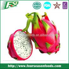 2014 High wholesale iqf pitaya fruit