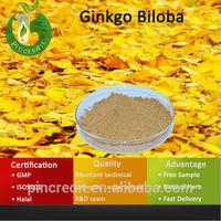 Ginkgo Flavone Glycosides/Ginkgo Biloba Extract /Ginkgo Biloba