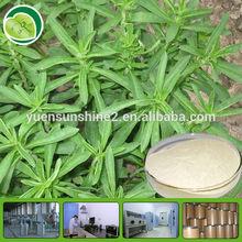 stevia in bulk Pure Stevia Leaf Extract