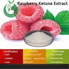 Raspberry Ketone/Raspberry Ketone Weight Loss/Raspberry Ketone Extract