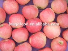 China fuji apples 2015