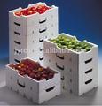 frutas y vegetales de la caja de poliestireno expandible eps material primas