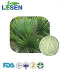 Good Price Sam Palmetto Extract in Palm Extract / Fatty Acid Powder 25% 45%