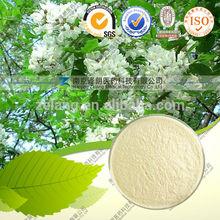 Herbal Medicine 100% Natural Quercetin Dihydrate 4 H- 1-Benzopyran-4-one