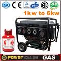 electric power standby china 2kw 2 kva natureza gerador de gás para venda com pneu kit