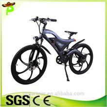 2014 New Model city mountain lithium battery brushless motor electric bike