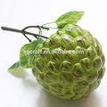 de alta calidad de américa del sur falso natillas de apple para el hogar decoración de la cocina y la pantalla