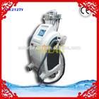 Hot Sale Best Popular in Chinese Dama zeltiqs cryolipolysis beauty machine