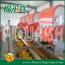 Automatic 3t/h industrial best citrus juice extractor supplier