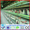 Factory high quality chicken farm poultry equipment/design layer chicken cage for sale