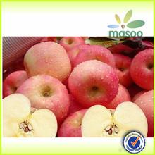 fresh apple/fruit market prices apple/apple for hot sale