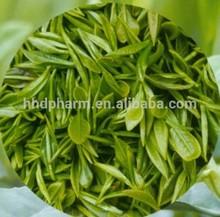 from Green Tea //Catechin CAS 154-23-4 //(-)-CATECHIN GALLATE (CG)//(-)-GALLOCATECHIN (GC) //(-)-Gallocatechin gallate (GCG)