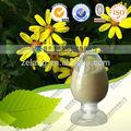 fabricar e fornecer natural escalada groundsel pó herb medicina herbal