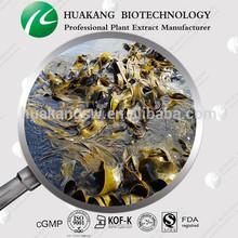 High Quality Kelp Extract ,Seaweed Extract