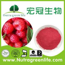 GMP100% Pure Raspberry Powder/ Raspberry Juice/Raspberry Fruit Concentrate Powder