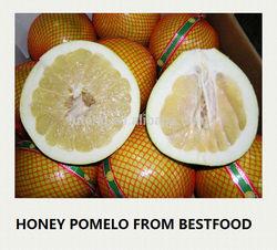 New Crop Fresh Pomelo Honey Pomelo Names All Fruits