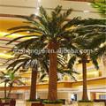 outdoor sjm14082859 artigosdejardinagem plantas artificiais data palmeira