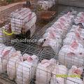 a buon mercato esterno portatile agricoltura saldati coniglio da compagnia gabbia di rete metallica
