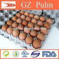 Platos para huevos de gallina bandejas molde de pulpa