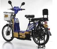 High loading capacity 4 wheel bike with 350w brushless motor(HP-ZZW)