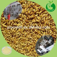 Best price 98% quercetin powder/quercetin bulk/sophora japonica extract