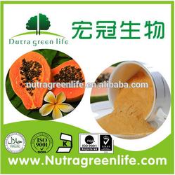 Papain, Papaya extract powder, papain enzyme, fine white powder