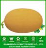 NSM04 Hatian hybrid vegetable seeds hami melon seeds cantaloupe seeds