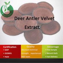 deer antler velvet/deer antler velvet powder/deer horn powder