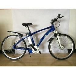 new design 36V250W motor adult electric bike