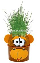 Magic Grass Head Hair Grow Plants Doll
