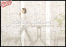 3 formu saydam eko reçine banyo bölme duvar sürgülü kapı
