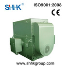 High-voltage Three-phase Induction Electric Motor