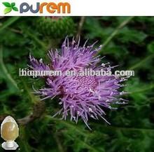 Rhaponticum Carthamoides Root/ Uniflower Swisscentaury Root /Maral Root Extract 5:1,10:1,20:1,5% ecdysterone
