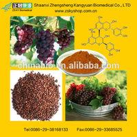 Natural OPC 95% / grape seed extract / grape seed p.e