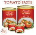 Cinese vendita calda 70g-4500g concentrato di pomodoro in scatola halal certificata
