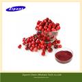 suco de fruta concentrado antocianidinas extrato da airela