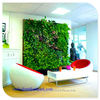 2014 hot sale China products home wall deco fake green wall ,artificial plants wall for home decor
