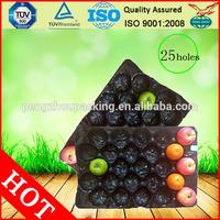 polypropylene pp blister fruit tray